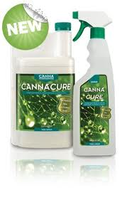 CANNA CURE PRONTO ALL'USO