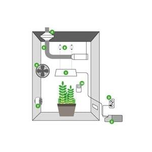 Guida di Coltivazione Indoor
